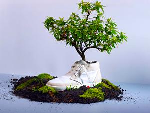 zapatillas-biodegradables-8216-plantan-8217_1_656789