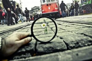 By Turkish photographer Salih Agir,  Imagen del fotógrafo turco Salih Agir