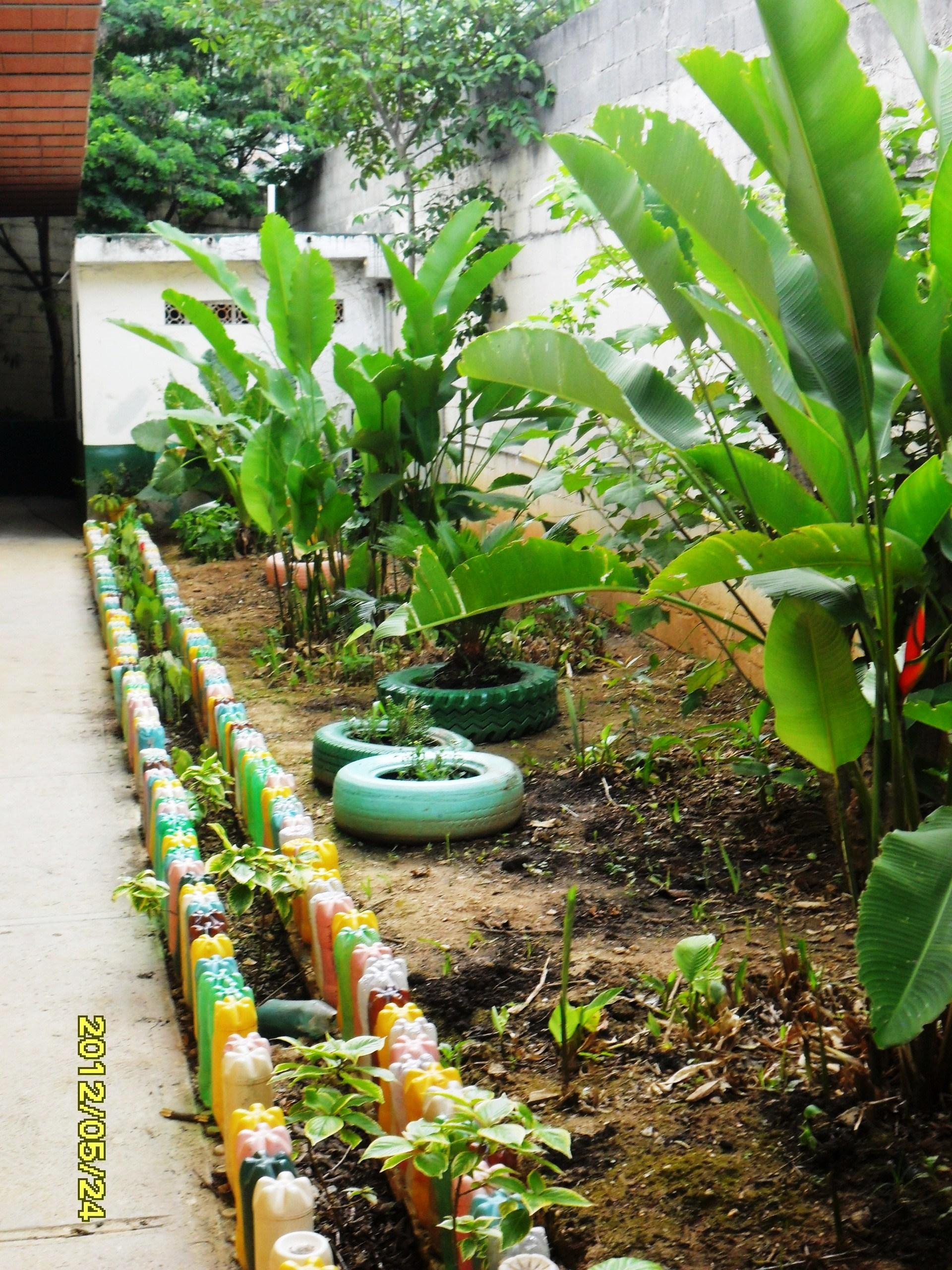 Proyectos Ecologicos Para Escuelas | apexwallpapers.com