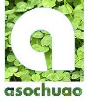 asochuao4