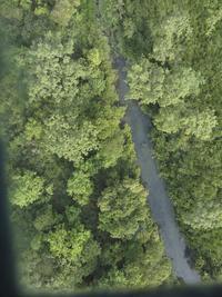 Vista aérea de la reserva de fauna en Nepal Foto/EFE/WWF