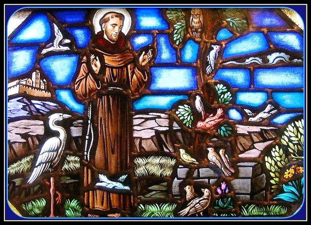 Francisco de Asís, el santo ecoógico