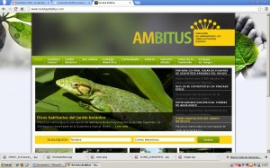Revista Ambitus Online