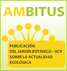 banner-ambitus