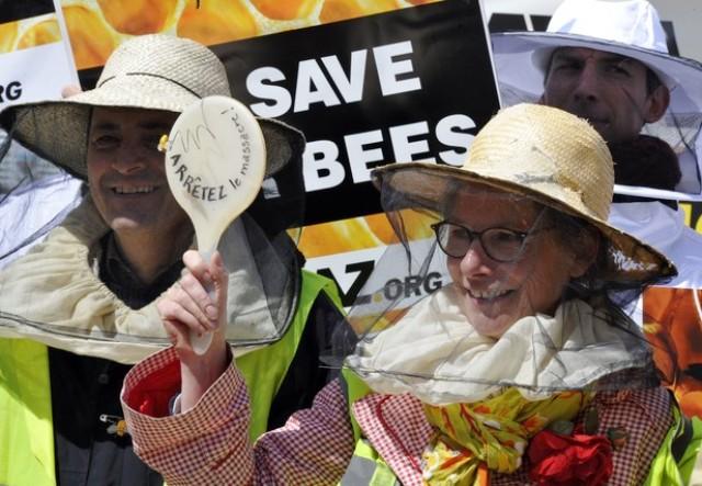 BELGIUM-EU-BEES-CHEMICALS-AGRICULTURE-ENVIRONMENT