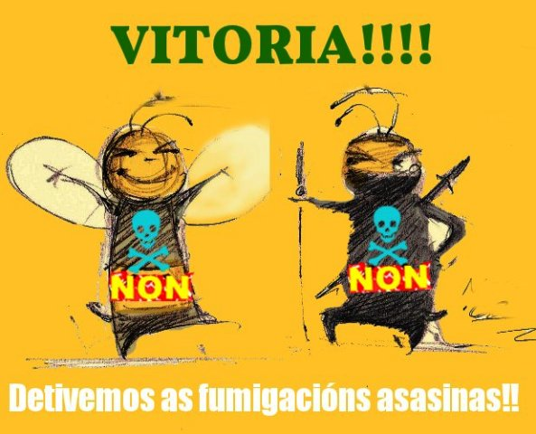 VITORIA-abellas-ninjas-by-FURALLEFALLE