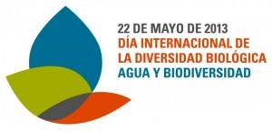 idb-2013-logo-es