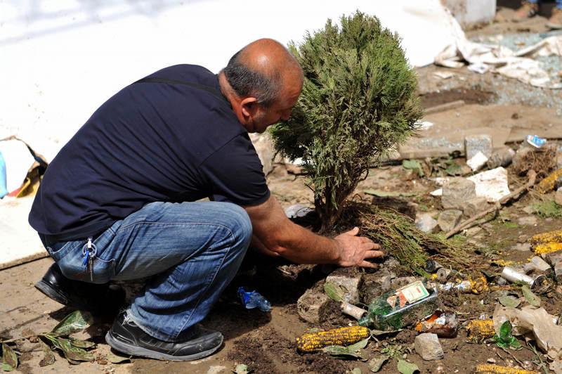 Un hombre planta un árbol de la calle Istiklal el 01 de junio de 2013, durante una protesta contra la demolición de Taksim Gezi Park, en la plaza de Taksim, en Estambul. | Créditos: AFP / Ozan Kose