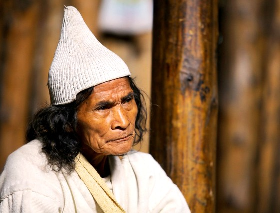 Mamo kogui (chaman)