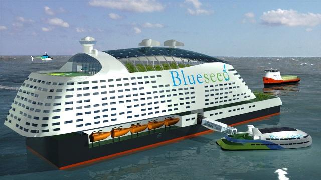 blueseed-crucero-2