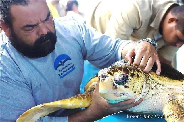 Foto cortesía Fundación La Tortuga