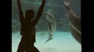Planeta Vital: chica hace reir al delfin