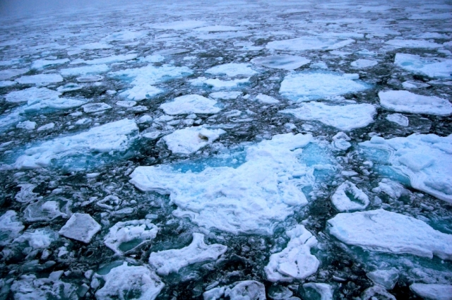 Hielo ártico. Crédito: Pink floyd88 a (Wikimedia Commons).