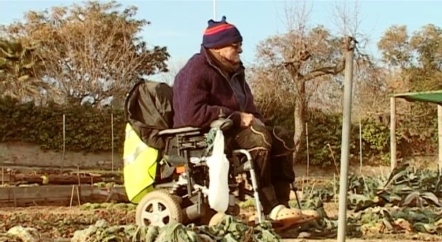 """Marcelino, portagonista del corto """"El Predicador"""", en su silla de ruedas cultiva un solar en medio de la ciudad de Barcelona, España. Foto cortesía de Scriptura Films"""