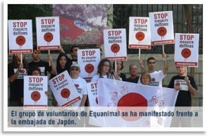 voluntarios-delfines-matanz