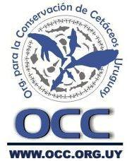 Organización-Conservación-Cetáceos-Uruguay