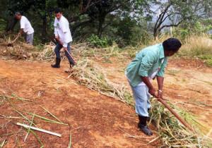 Voluntarios de la Favela Morro da Formiga preparan terrenos para la reforestación.Photo: Franka Braun