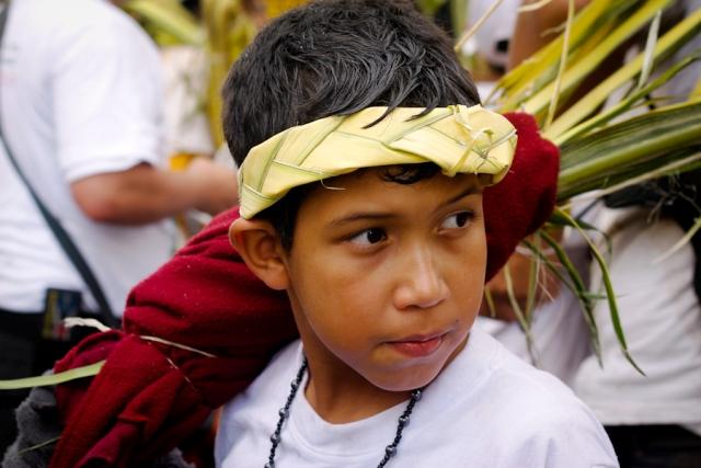 Palmeritos de Chacao, aprendiendo a cuidar y querer la tradición. Foto Alberto Rojas