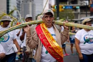 El Palmero Mayor, Ramón Delgado, foto Alcaldía de Chacao