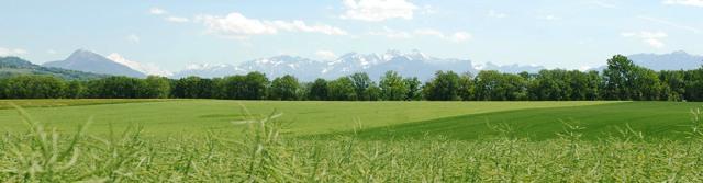 Paisaje de Jussy, Ginebra