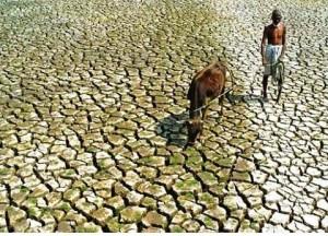La desertificación como problema mundial