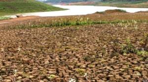 Vista de la una parte seca de Cantareira, reservorio responsable por el abastecimiento de agua de casi 6,5 millones de personas en la región metropolitana de Sao Paulo. Foto Nuevo Herald