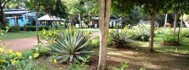 """Estación Biológica de Los LLanos """"Francisco Tamayo"""""""