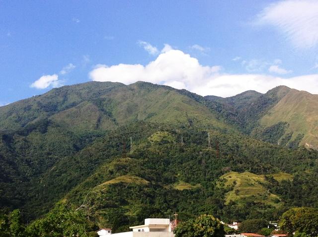 El Avila montaña sagrada. Foto Marisela Valero