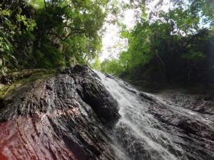 Quebrada de Quintero, El Avila, Caracas, Venezuela. Foto Planeta Vital