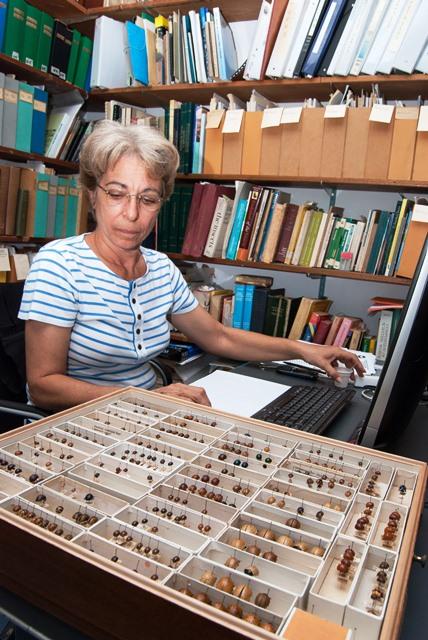 Vilma Savini, entomóloga del MIZA