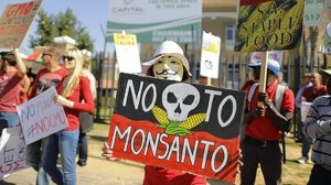 Protestas a nivel mundial por el riesgo a la salud provocado por Monsanto