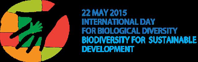 idb-2015-logo-en