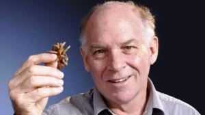 Doctor Robert Raven, curador del Queensland Museum