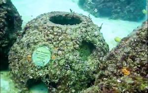 Eternal Reef