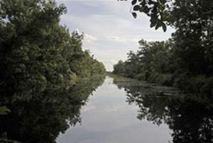 Canales en Palangkaraya, en la provincial de Kalimantan Central, Indonesia, son bloqueados por diques con el fin de retener agua para la regeneración de turberas.