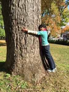 Los árboles para la Tierra. Foto Nidia Hernández