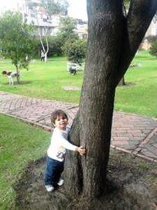 Enseñemos a los niños a amar los árgoles. Foto Héctor Luna