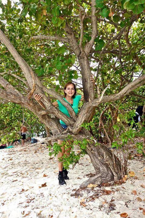 Somos uno con los árboles. Foto Brian Perrault