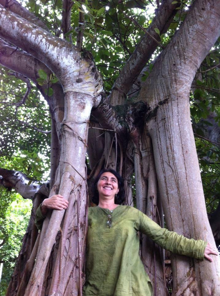 Los árboles oxigenan la vida. Foto Marisela Valero