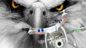 Aguila atrapa drones