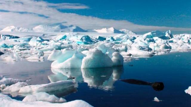 La belleza  Antártica estará protegida