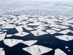 Expedición Circumpolar Antártica