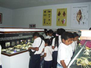 El Museo va a la escuela. un legado de Cervigón