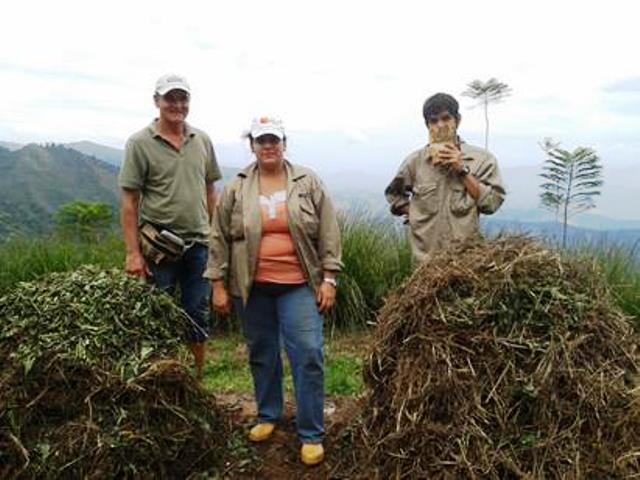Preparando las pilas de compost para abonar. Foto Rosa Mary Hernández