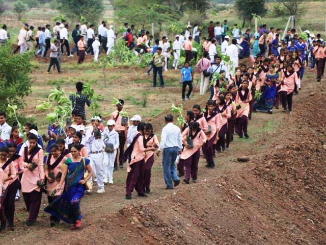 En las márgenes del río Narmada del estado de Madhya Pradesh plantaron 66 millones de árboles