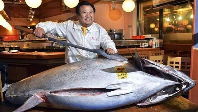 Alimentación con pescado disminuye las reservas mundiales