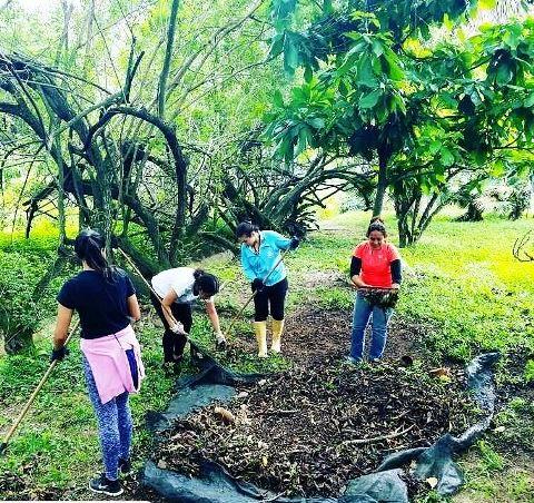 Estos son algunos de los voluntarios que con amor y constancia se han dado cita en el Jardín Botánico de Caracas. Cada Sábado de 9 a 3 pm. Llueve, truene o relampague #NosotrosVsElMonte una espacio de hacer florecer lo mejor que tenemos: La voluntad