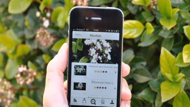 Plant Net App