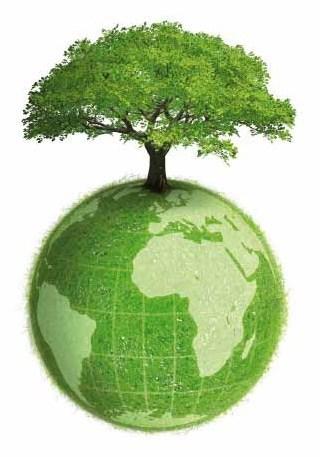 Dia de la Educación Ambiental