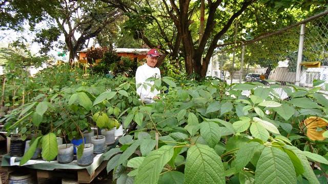 Luis Corona, voluntario, el regador de los domingos como lo llaman en el vivero